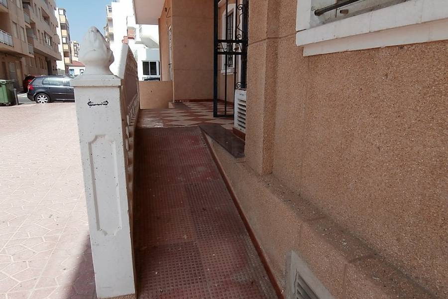 Vente - Local commercial  - La Mata - La Mata Center