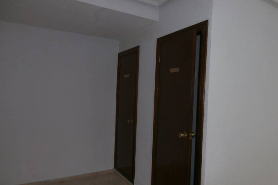 Vente - Local commercial  - Alicante/Alacant - Carolinas Bajas